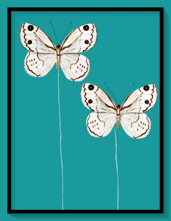 Διακοσμητικές Πεταλούδες 3864026