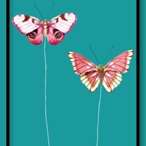 Διακοσμητικές Πεταλούδες 3864028
