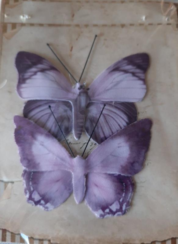 Διακοσμητικές Πεταλούδες 3864029