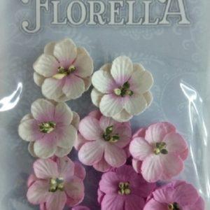 Διακοσμητικά Λουλούδια 3866015
