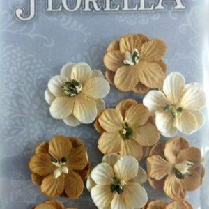 Διακοσμητικά Λουλούδια 3866018
