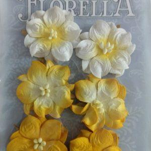 Διακοσμητικά Λουλούδια 3866024