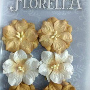 Διακοσμητικά Λουλούδια 3866028