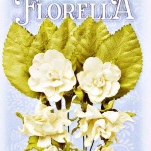 Διακοσμητικά Λουλούδια 3866082
