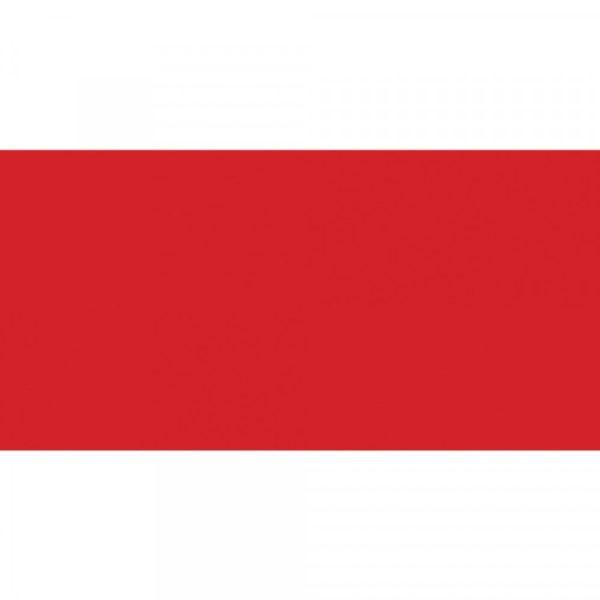 Λάδι Talens Van Gogh 9200141 - Cadmium Red Light - 20ml