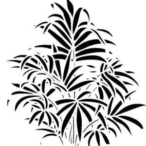 Στένσιλ Decofoam D-0102000 - 50x50cm - Διακοσμητικό Φυτό